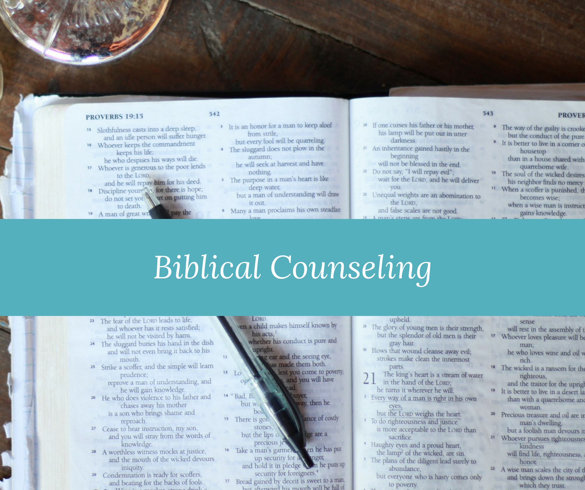 biblical counseling acbc counselor
